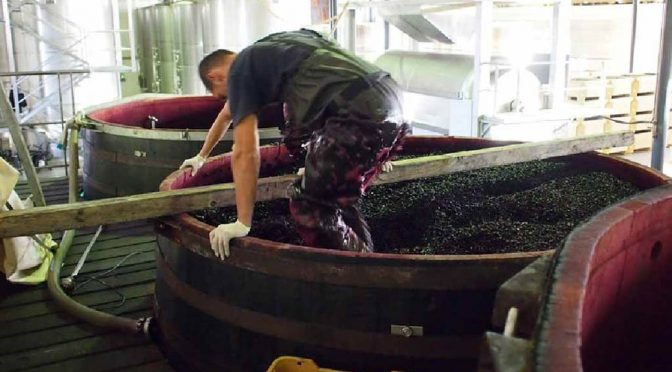 2007 Bodegas y Viñedos Artadi, Viñas de Gain, Rioja, Spanien