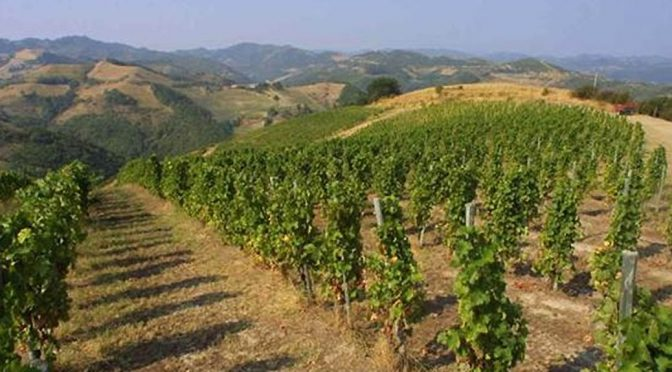 2007 Castelluccio, Massicone, Emilia-Romagna, Italien