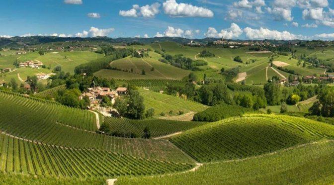 2010 Cordero di Montezemolo, Barbera d'Alba, Piemonte, Italien