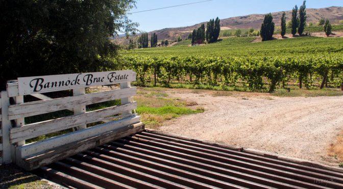 2006 Bannock Brae Estate, Goldfields Pinot Noir, Central Otago, New Zealand