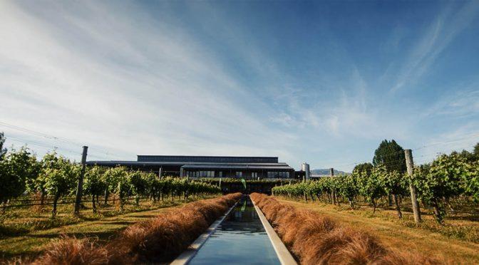 2010 Villa Maria, Dry Riesling Private Bin, Marlborough, New Zealand