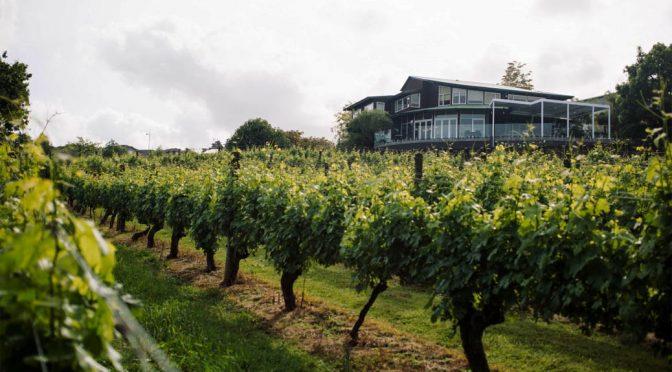 2009 Babich Wines, Pinot Noir, Marlborough, New Zealand
