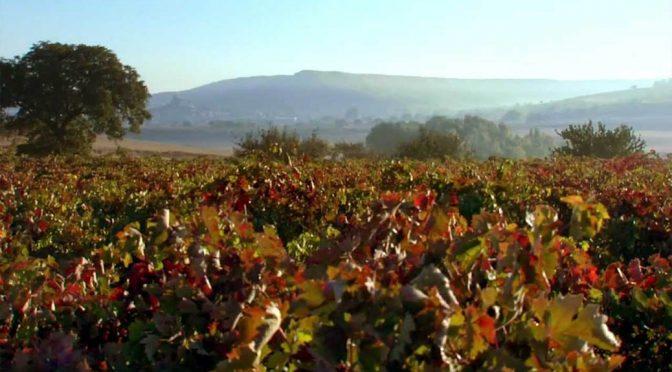 2008 Bodegas Resalte de Peñafiel, Peña Roble Crianza, Ribera del Duero, Spanien