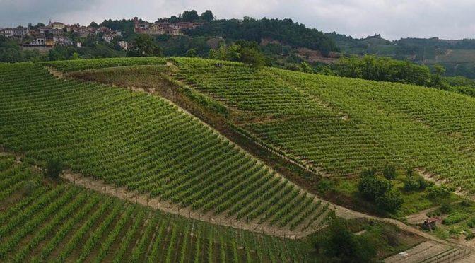 2011 Giovanni Almondo, Bricco delle Ciliegie Roero Arneis, Piemonte, Italien