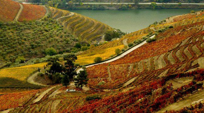 2004 Roquette e Cazes, Xisto, Duero, Portugal