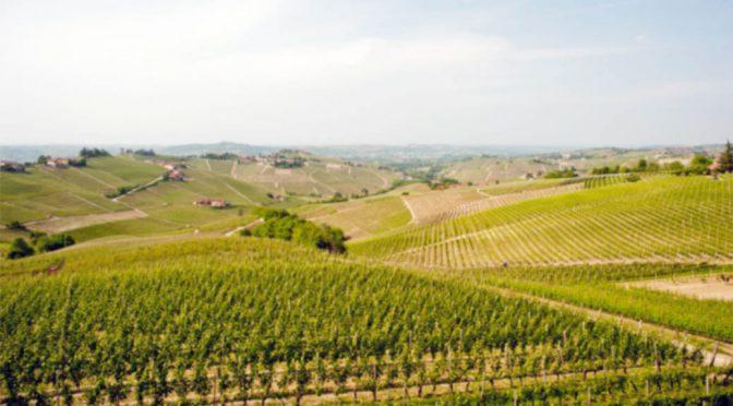 2008 Sottimano, Barbaresco Currá, Piemonte, Italien