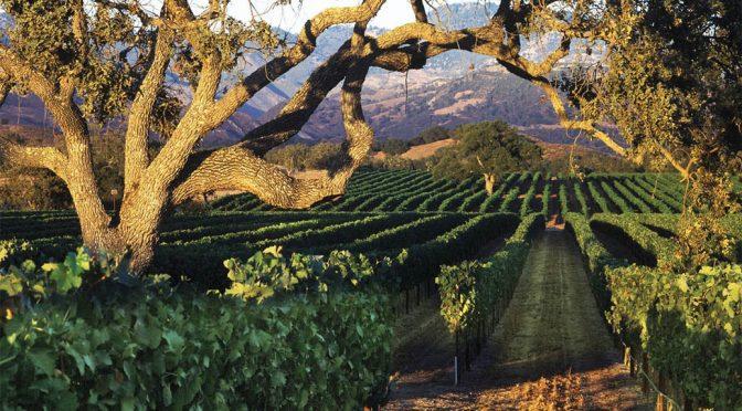 2008 Fess Parker, Pinot Noir, Californien, USA