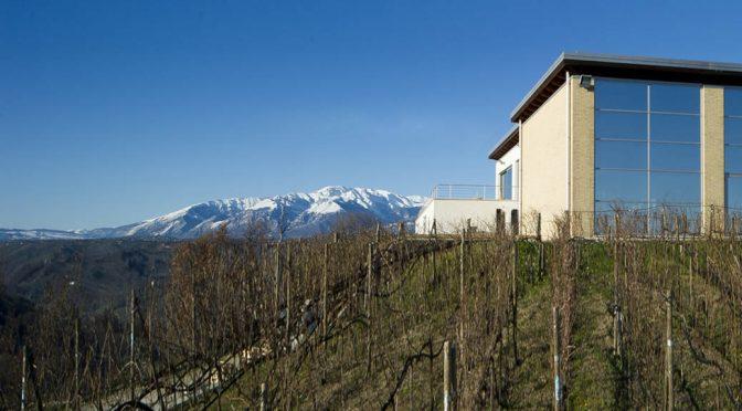 2008 Azienda Collefrisio, Uno Montepulciano d'Abruzzo, Abruzzo, Italien