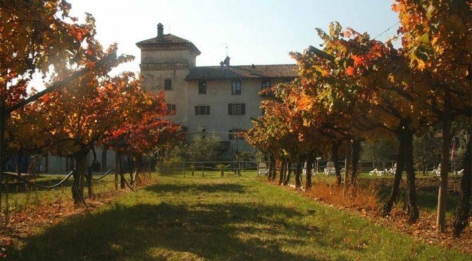 N.V. La Colombera, Duca Della Rocca Vino Frizzante Secco IGT, Veneto, Italien