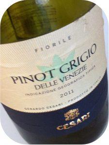 2011 Gerardo Cesari, Fiorile Pinot Grigio delle Venezie IGT, Veneto, Italien