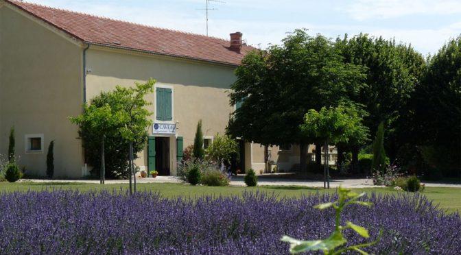 2011 Domaine du Séminaire, Valréas Côtes du Rhône Villages, Rhône, Frankrig