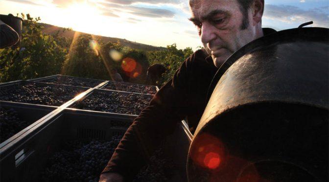 2011 Mas Coutelou, Le Vin des Amis, Languedoc, Frankrig