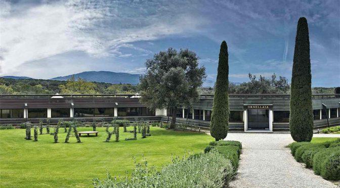 2011 Tenuta dell' Ornellaia, Le Serre Nuove dell' Ornellaia, Toscana, Italien