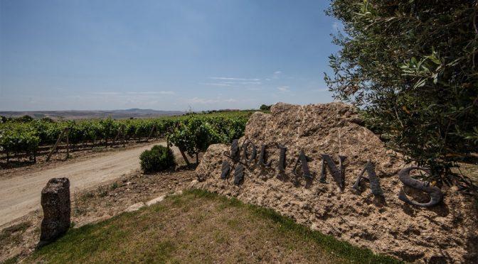2012 Olianas, Vermentino di Sardegna, Sardinien, Italien
