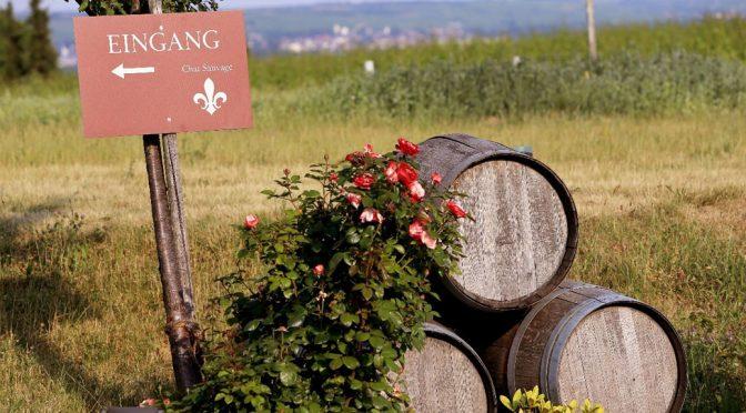 2009 Weingut Chat Sauvage, Pinot Noir, Rheingau, Tyskland