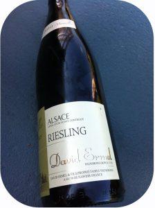 2010 Domaine David Ermel, Riesling Vieilles Vignes, Alsace, Frankrig