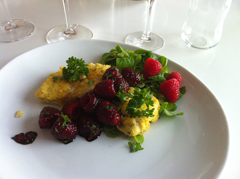 Rødtunge-polenta og bær