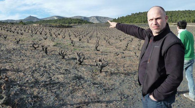 2012 Jeff Carrel, Morillon Blanc, Languedoc-Roussillon, Frankrig