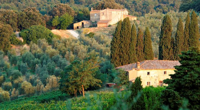2010 Azienda Agricola Il Palagio, Chianti Classico, Toscana, Italien
