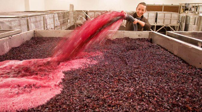 2012 Viñas del Cenit, Venta Mazarrón, Tierra del Vino de Zamora, Spanien