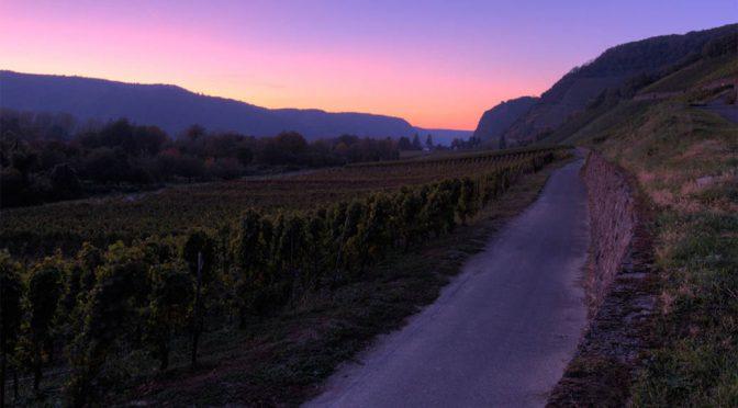 2012 Josten & Klein, Mayschoss Pinot Noir, Ahr, Tyskland