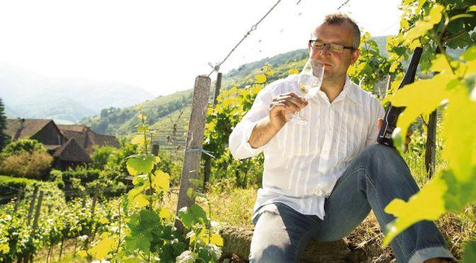 2013 Weingut Sighardt Donabaum, Riesling der Rehbock, Niederösterreich, Østrig