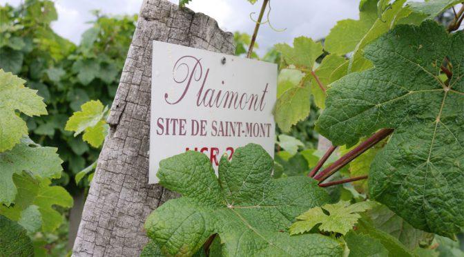 2014 Plaimont Producteurs, Domaine de Cassaigne Le Labyrinthe Blanc, Gascogne, Frankrig