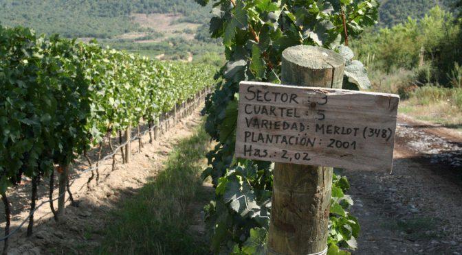 2011 Viñedos Emiliana, Signos de Origen Carmenere, Colchagua, Chile