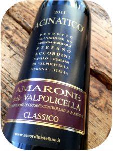 2011 Stefano Accordini, Acinatico Amarone della Valpolicella Classico, Veneto, Italien