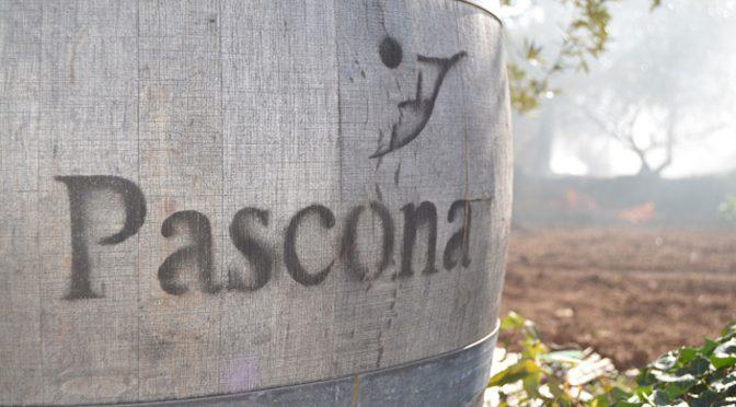 2014 Pascona, Maria Ganxa, Montsant, Spanien