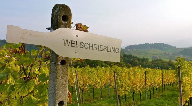 2014 Weingut Römerstein Ernst Waltschek, Welschriesling, Burgenland, Østrig