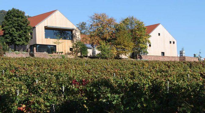 2013 Weingut Rudolf Fürst, Centgrafenberg Frühburgunder, Franken, Tyskland