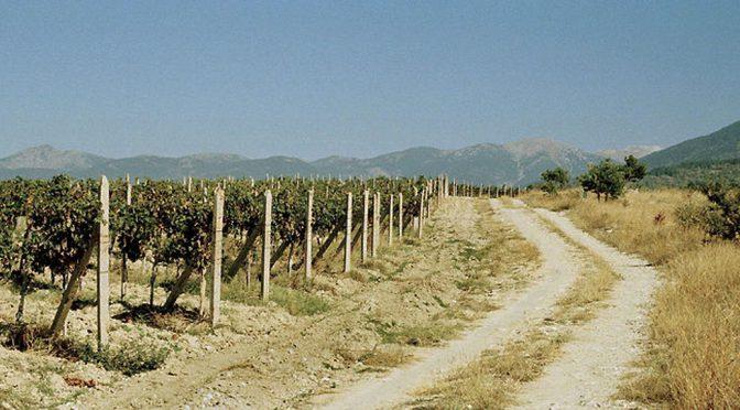 2013 Damianitza Winery, Uniqato Rubin, Det Trakiske Lavlande, Bulgarien