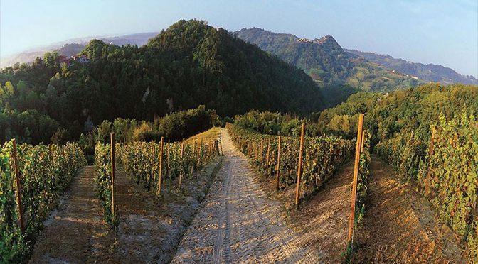 2014 Dezzani, Miliasso Toscana Rosso, Toscana, Italien