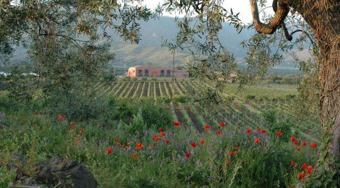 2014 Tenuta Terre delle Nere, Etna Rosso, Sicilien, Italien