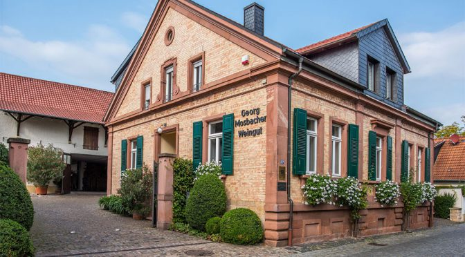 2015 Weingut Georg Mosbacher, Riesling Trocken, Pfalz, Tyskland