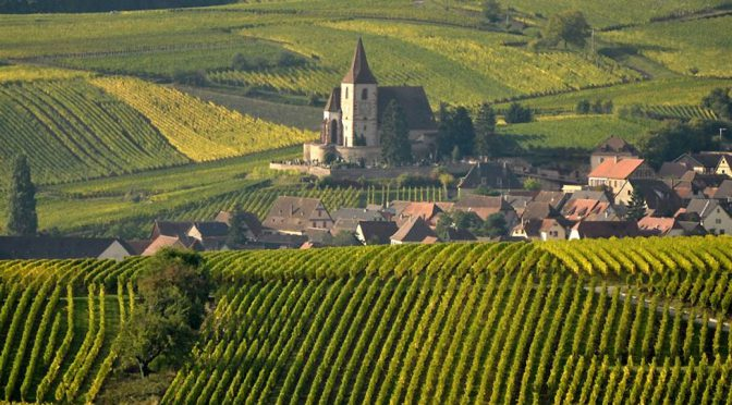 2015 Domaine Sipp Mack, Riesling Tradition, Alsace, Frankrig