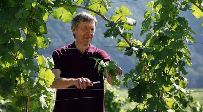 2009 Weingut Alzinger, Dürnsteiner Riesling Federspiel, Wachau, Østrig