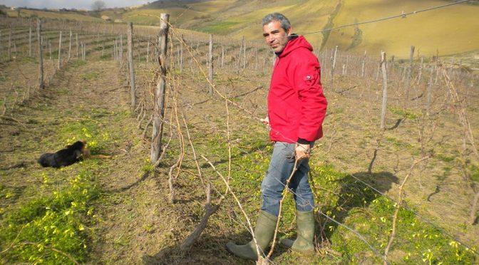 2014 Lamoresca, Nerocapitano Vino Rosso, Sicilien, Italien