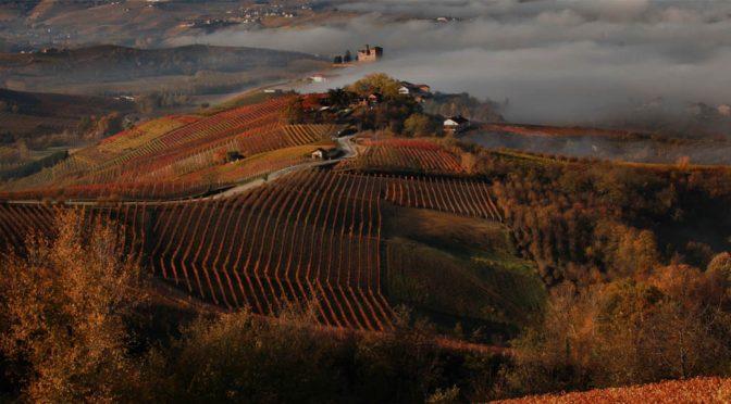 2013 Terre del Barolo, ArnaldoRivera Barolo Vignarionda, Piemonte, Italien