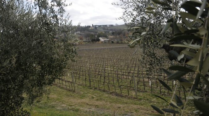 2015 Arnaldo Caprai, Montefalco Rosso Vigna Flaminia Maremmana, Umbrien, Italien