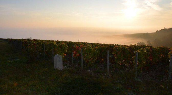 N.V. Alexandre Bonnet, Blanc de Noirs Brut, Champagne, Frankrig