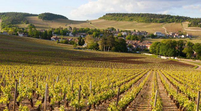 2012 Domaine Bernollin, Bourgogne Blanc Côte Chalonnaise Sous la Roche, Bourgogne, Frankrig