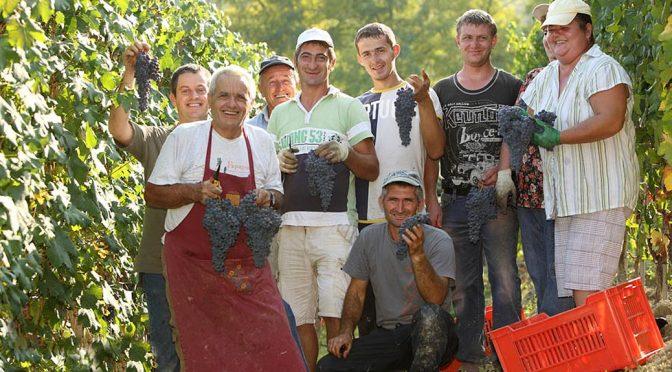 2015 Elio Grasso, Langhe Chardonnay Educato, Piemonte, Italien