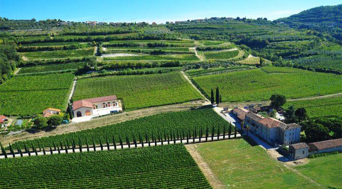 2015 Marion, Borgo Marcelisse Valpolicella, Veneto, Italien