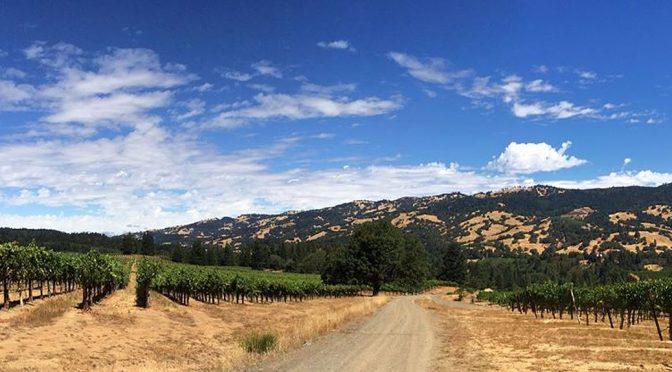2012 Edmeades, Mendocino County Zinfandel, Californien, USA