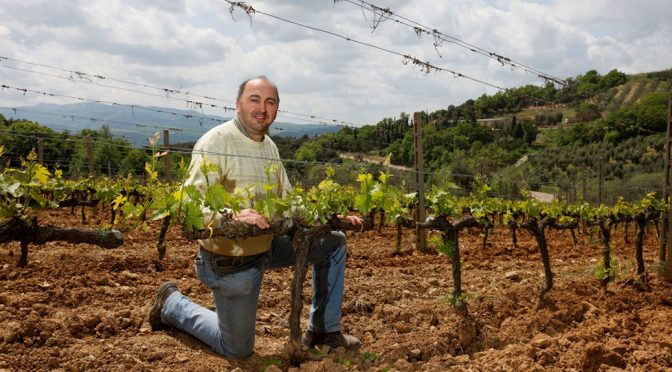 2015 Voliero, Rosso di Montalcino, Toscana, Italien