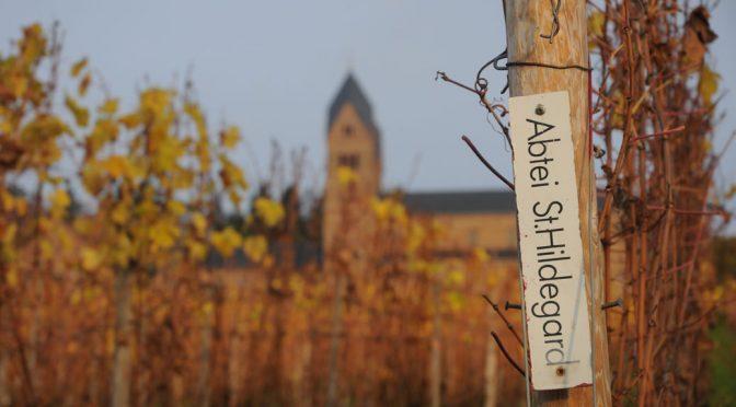 Besøg hos Klosterweingut Abtei St. Hildegard … et lynvisit hos nonnerne