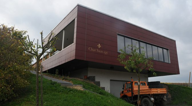 Besøg hos Weingut Chat Sauvage … rebelsk bourgognefreak i Rieslingland