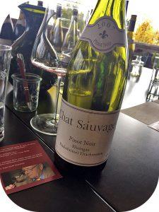 2007Weingut Chat Sauvage, Rüdesheimer Drachenstein Pinot Noir, Rheingau, Tyskland
